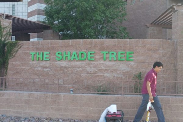 the-shade-tree-dimensional-1024x576